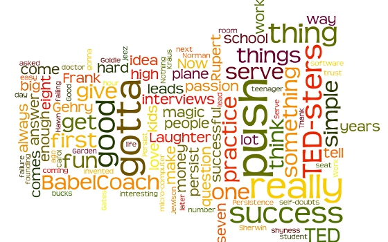 Wordle: TED, 8 secrets of success